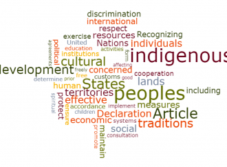 UNDRIP: United Nations Declaration on the Rights of Indigenous Peoples