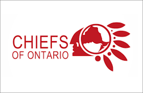 Government of First Nations in Treaty 2 Territory extends congratulations to the newly elected, Ontario Regional Chief Glen Hare